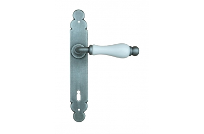 Dublin Galbusera Door Handle with Plate