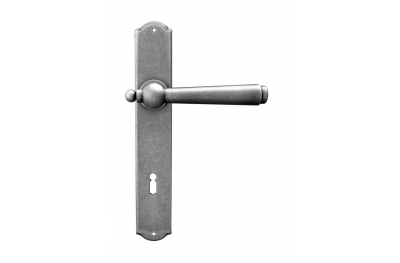 Munich Galbusera Door Handle with Plate